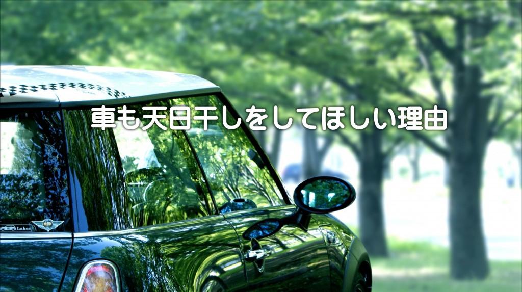 車も天日干しをしてほしい理由|白河市・棚倉町の洗車専門店