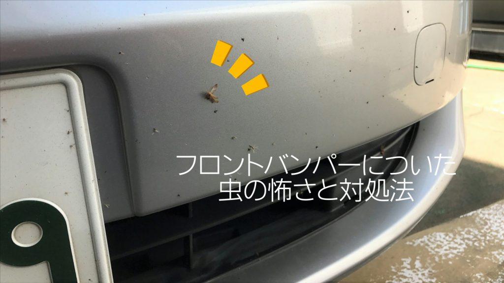 フロントバンパーについた虫の怖さと対処法について|白河市・棚倉の洗車専門店
