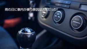 雨の日に車内が臭う原因はカビだった!|白河市・棚倉町の洗車専門店